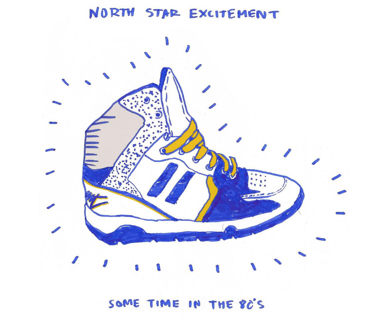 North star web